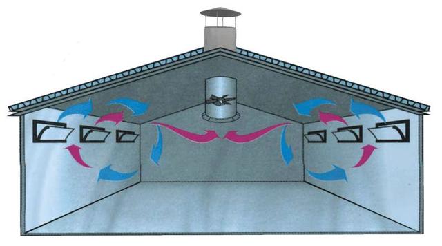 Приточно-вытяжная система вентиляции коровника
