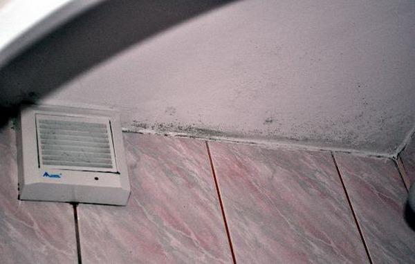 Плесень на стенах в ванной из-за плохой вентиляции